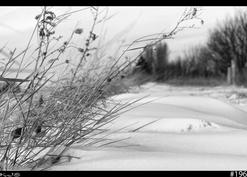 Drifts<br /> The grass line is always a good spot for catching and holding snow. Temps are suppose to be warmer this up coming week, so maybe we will loose some of this evil white stuff.