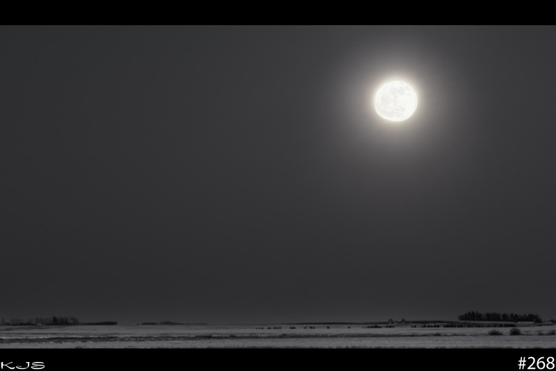 Feb Full Moon<br /> The official full moon rolled in as it rose above the horizon. I wanted to get some scenery with it so I shot a long exposure and than a shorter exposure for the moon and than blended them together. I than went with black n white processing.