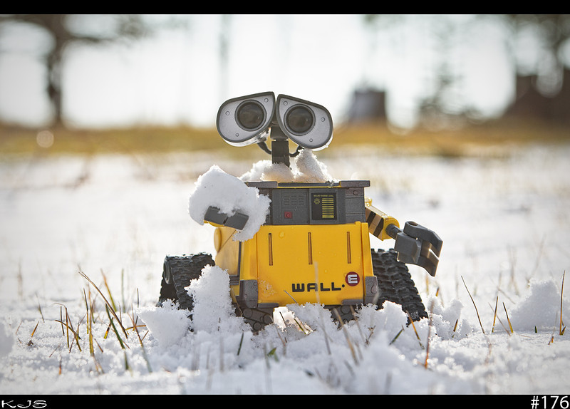 Wall-e's first winter in North Dakota. He thinks it's cold now, boy is he in for a surprise. Gonna have to find some mits, scarf and beanie to keep him warm.