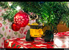 Wall-e<br /> The Christmas tree went up today and the presents are under the tree. Wall-e was mesmerized by all the wonderful colors and lights.