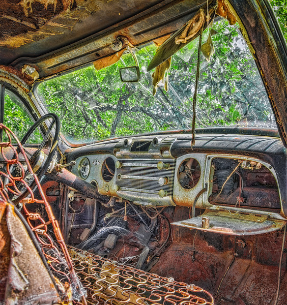 Interior<br /> I always like to run across an old car parked out in the bushes to capture the interior and do a grunge effect to it.