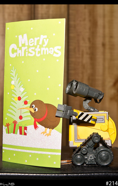 Wall-e<br /> A Christmas card came today from our NZ friend, so Wall-e was checkin out the card. Lot's of firsts for Wall-e this year.