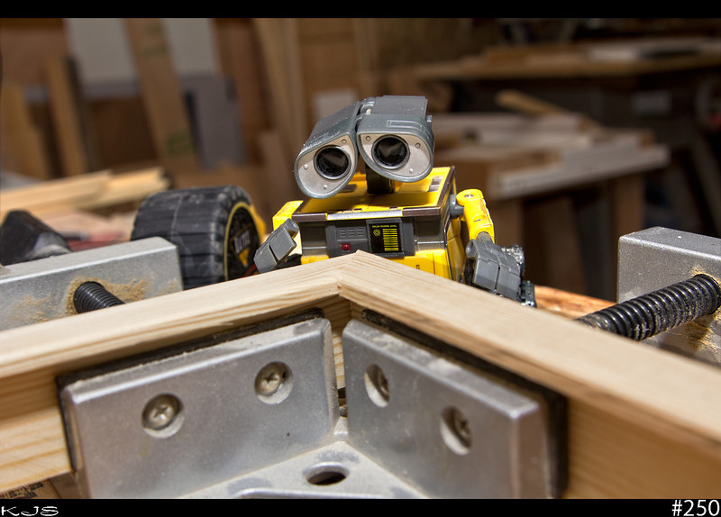 It was another day of indoors today, so Wall-e and I were in the shop building a picture frame. Just look at the concentration Wall-e is putting into lining up the corner in the clamp. I just might be able to make a picture frame maker out of him yet.