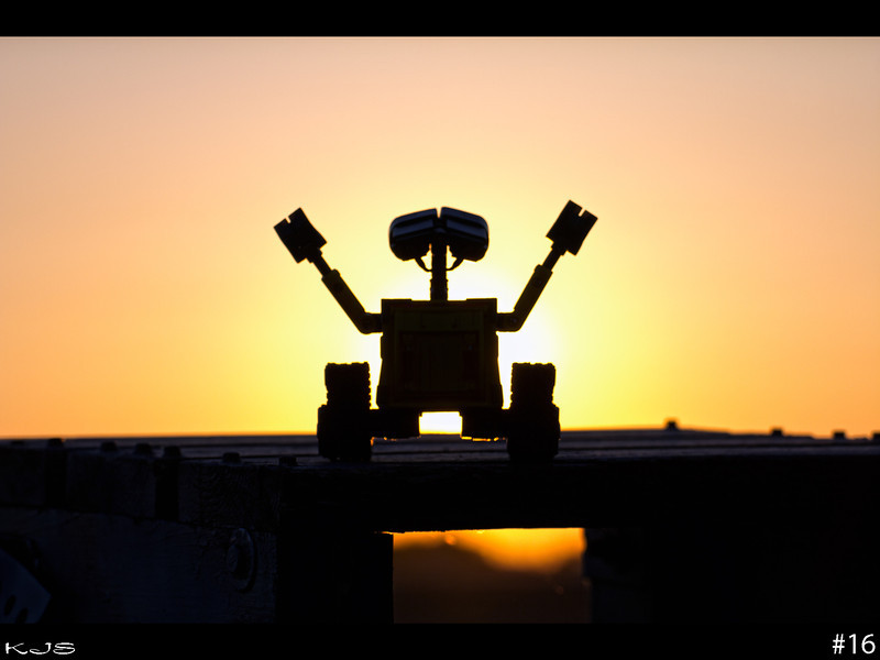The sun made it out today and what a treat it was to get out and enjoy it, even if it meant getting caught up on the mowing. Tomorrow the chance of showers return, but at least we got to watch the sunset tonight. Wall-e was pleased with his view.