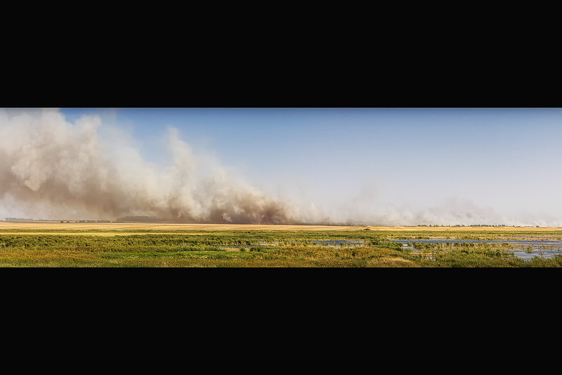 Fire<br /> What to do when it's<br /> Humidity34%<br /> Wind SpeedS 22 G 30 mph<br /> Barometer29.68 in<br /> Dewpoint61°F (16°C)<br /> Visibility10.00 mi<br /> Heat Index93°F (34°C)<br /> Conditions: very dry<br /> ?<br /> Start something on fire of course