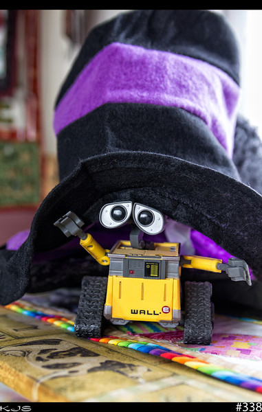 Wall-e<br /> It's been a while since Wall-e been in a photo, but Wall-e discovered the new hats that came in the mail the other day, so he had check them out. Looks like we gonna have to find one more his size tho.