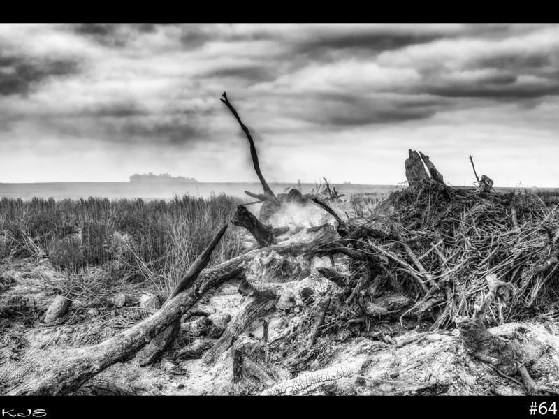 The country side is littered with trees down, such a sad site. Not sure why the farmers are talking em down. Used photomatix beta7 for this one.