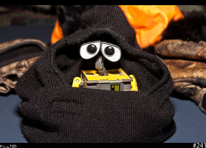 Wall-e<br /> After today's weather, Wall-e was scrambling for some winter gear. Wind Chill: -18 °F (-28 °C)