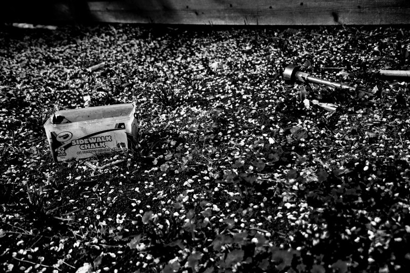 Day 224. February 17, 2011. After some medium-heavy rains, flower petals rain to the ground, where old trash lay abandoned.<br /> <br /> EF-S 17-55mm f/2.8 IS @ 24mm, f/2.8, 1/800s, ISO 100.