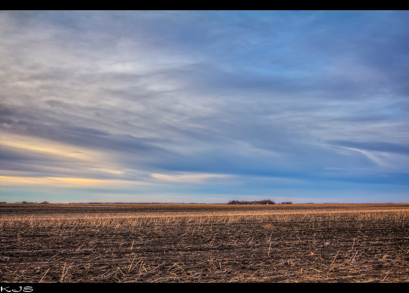 Christmas Day 2011<br /> <br /> Another shot of a field that is snow free.