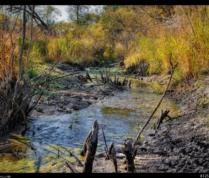 Fall<br /> On today's hike, ran across the remains of the watering hole.