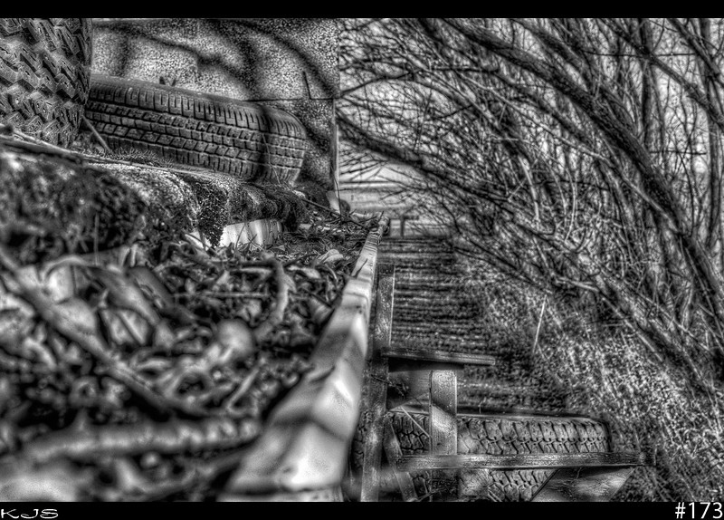 Gutter<br /> Today I woke up late and still tired, it feels like a black n white day as the gutters are full of leaves and twigs. Yay for the weekend to have some fun.