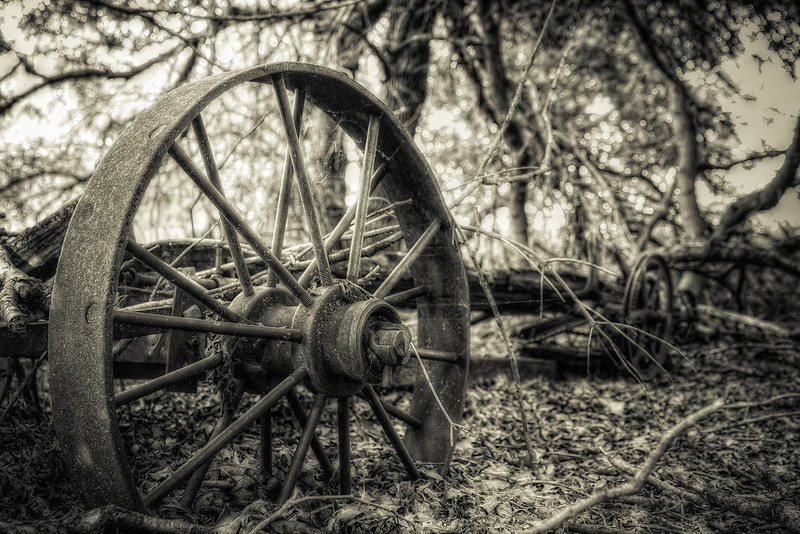 Wheel of Time<br /> Out checking the tree stands to see what activity is out there and ran across this old time piece of farm equipment.