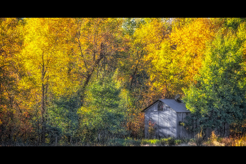 Fall Grainery<br /> The fall colors are here and not expected to last long due to the drought conditions. It was a beautiful day to get out and enjoy the colors.