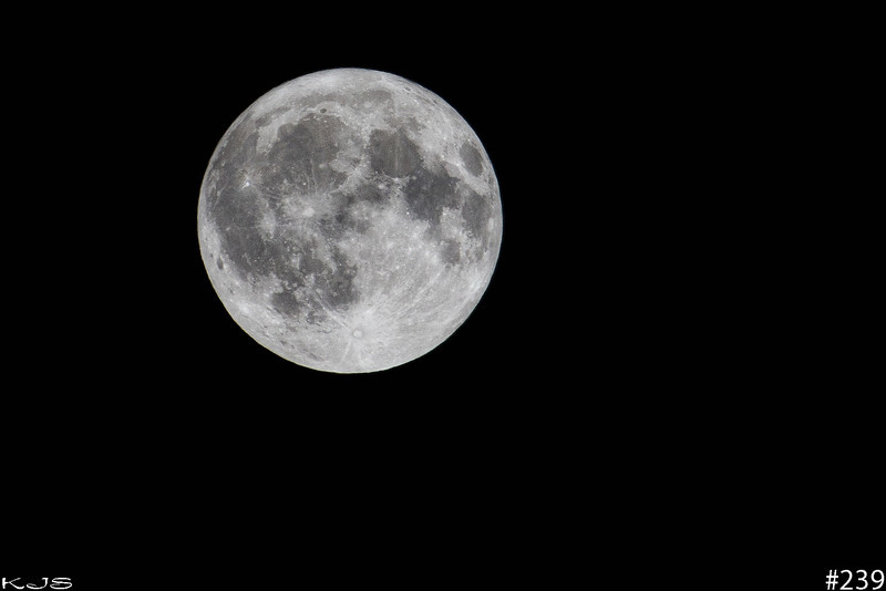 January Full Moon<br /> woohoo, and the sky parted and full moon shines. 100% Full Moon
