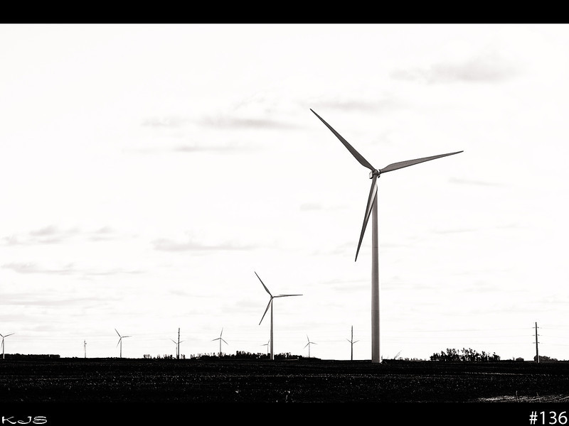 Three<br /> The theme for the hobbiest photographers on google+ is 3. So passing by these today and 3 blades works for me.