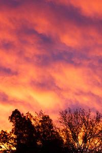 1/356 take 2 - sunrise on the morning of the Tucson memorial