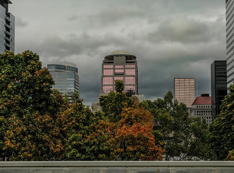 1022 overcast  Fall has fell in the Pacific Northwest.