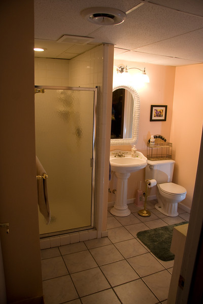 Lower level bathroom with shower.