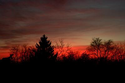 16 The Links Road Sunrise Nov 2011