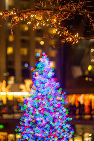 O Christmas Tree, O Christmas Tree~