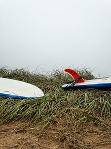 surf-7232