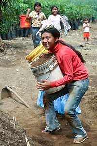 Child Laboror in Guatemala