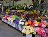 This flower stand is outside of a small store between my subway stop and my office. It always has this sort of an array of varied and bright colored flowers. It is a wonderful thing to look at in the middle of the city on the way to work and on the way home. (9-21-12)