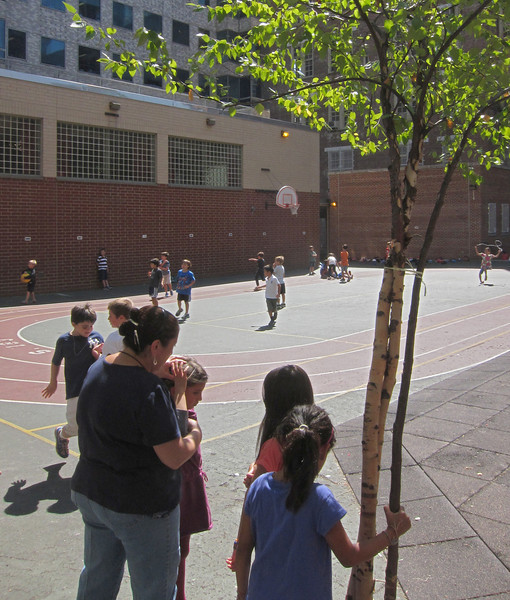 The leaves are still on the trees, the sun is shining, but school has started. At least, recess still exists for the elementary school children. (9-12-12)