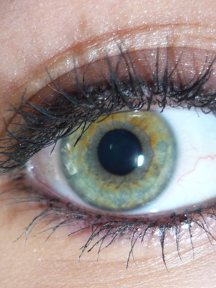 Eyeball - Hallie