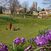"""09.04.13 - Spring in Temple Gardens<br /> <br /> Spring sunshine on the crocuses, a family playing amongst the """"dinosaur poo"""" sculpture, and the cathedral on the hill behind, idyllic? Well yes, apart from the biting east wind that still blights most of the UK. But at least it has been dry for a couple of weeks now, which enabled me to lay on the ground to take this shot.  The wind is due to turn westerly tomorrow, so it will be warmer but wetter, what a trade off!"""