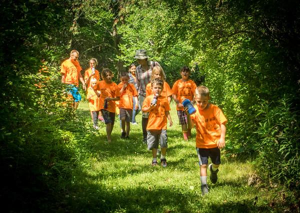 Ancram Summer Camp LP picks
