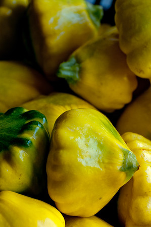 Sol Flower Farm patty pan squash