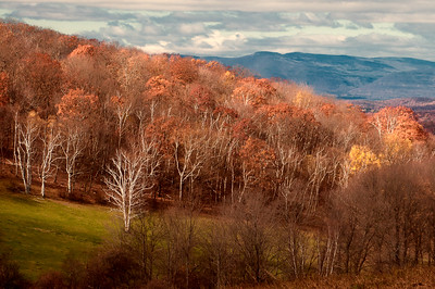 Pulver Farm view toward Catskills