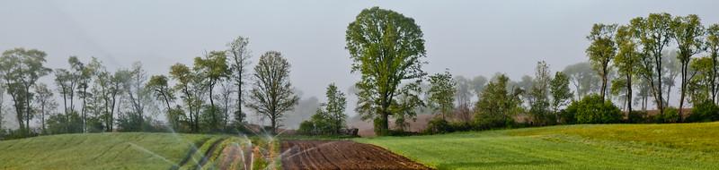 1005_Thompson Finch Farm_004