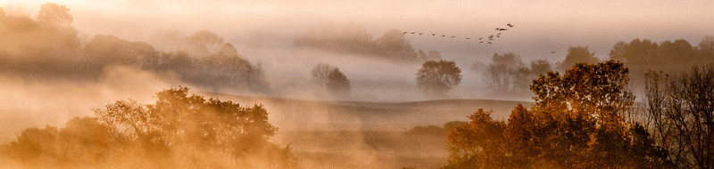 36x24 Tim's Road Geese in Fog Master-1