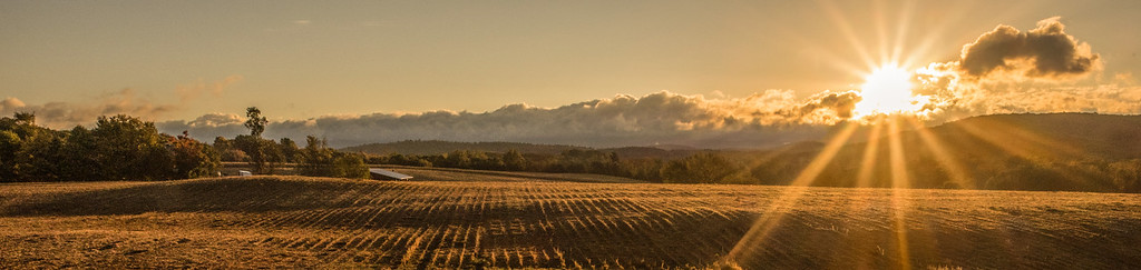 Morning sun rays over harvested field