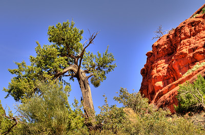 HDR-Arizona-3851_2_3