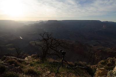 Arizona-4498-2