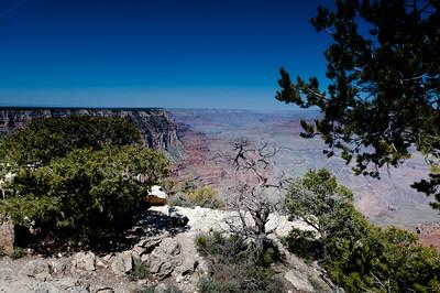 Arizona-5477