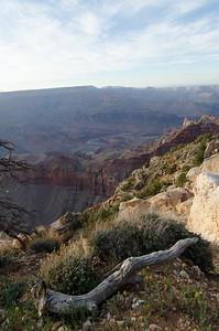 Arizona-4499-2