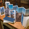 PANORAMIC TREE PORTRAITS, book, case, front and back of book