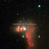 FLAMMETÅKEN NGC 2024 - HESTEHODETÅKEN B33 OG IC 434 - FLAME NEBULA NGC 2024 - HORSEHEAD NEBULA B33 AND BRIGHT RED EMISSION NEBULA IC 434.