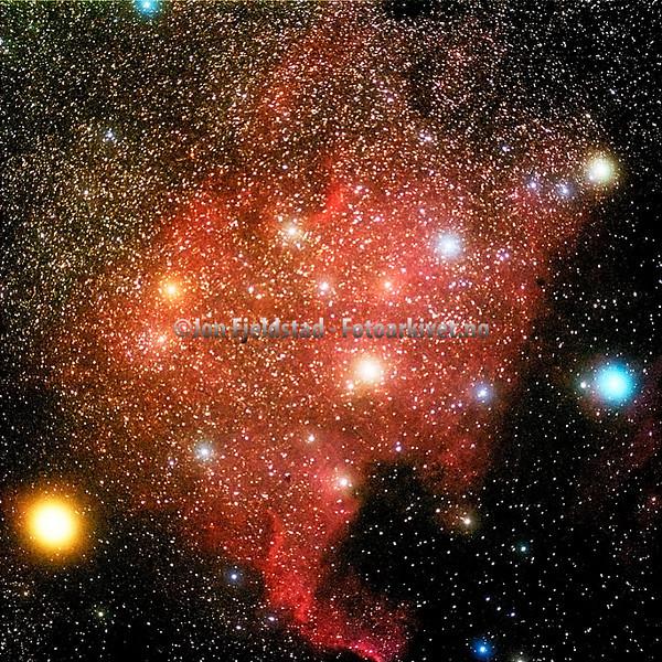 NGC7000 NORD-AMERIKA TÅKEN - NORTH AMERICA NEBULA