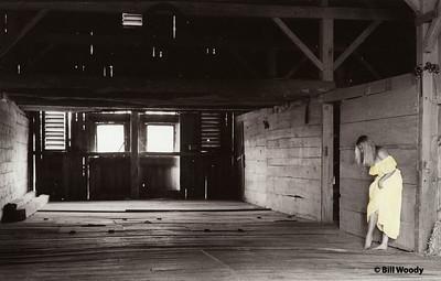 In the Barn #2