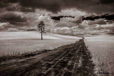 Country Road IR #1