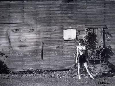 Face on the Barn Wall *