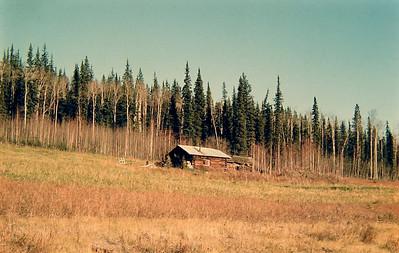 Chena Hot Springs Rd, N of Fairbanks, Alaska, fall 1971