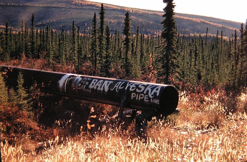 abandoned pipeline, Fox, AK, sep 1972