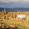 abandoned VWs, gold stream rd, fairbanks, Alaska, fall 1971